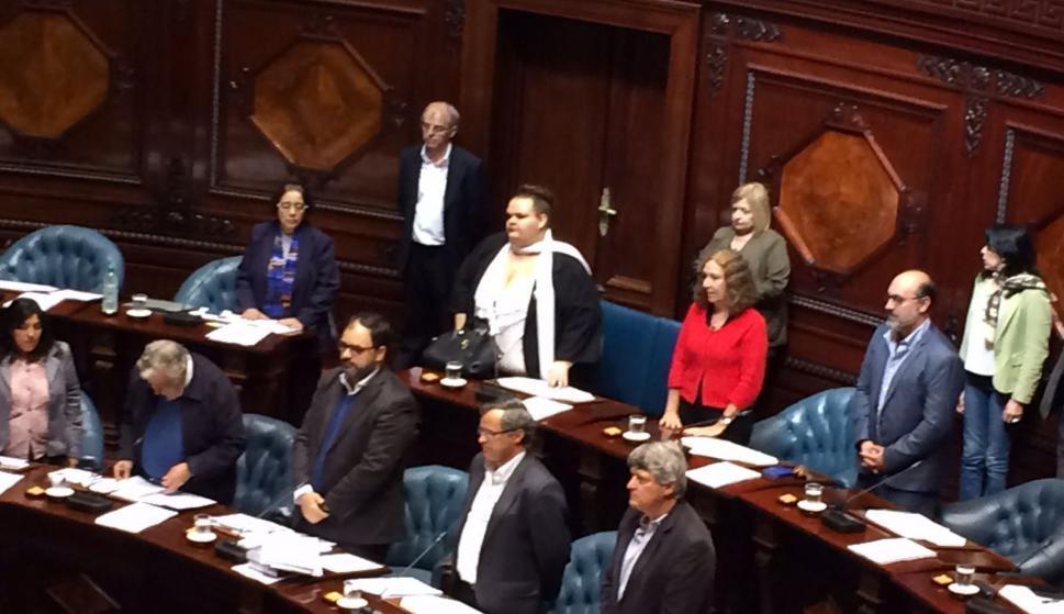 Michelle Suárez ya es senadora. Foto: Bruno Scelza