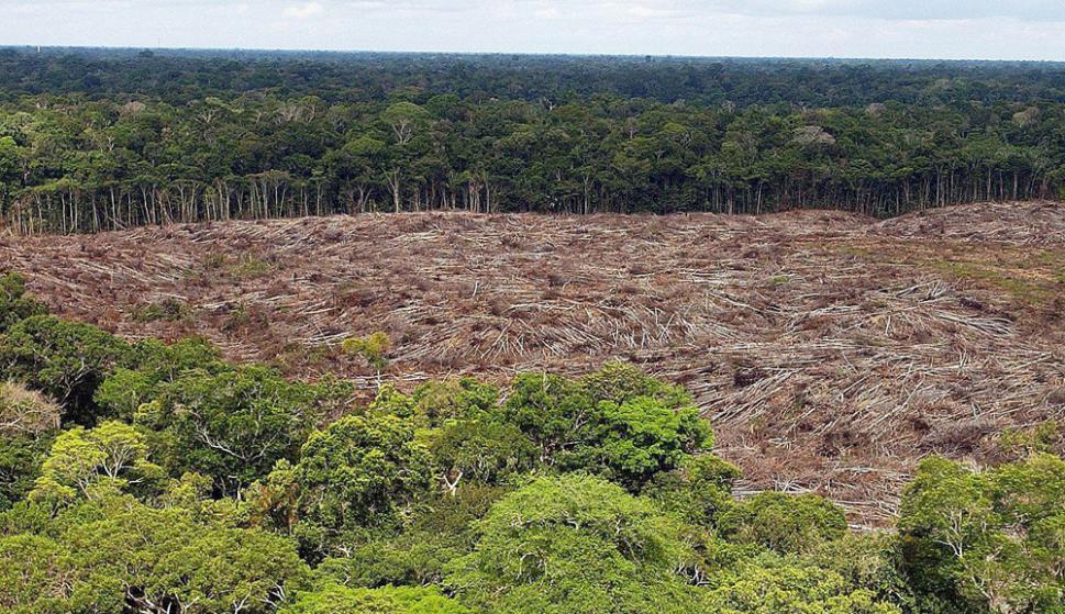 El actual ritmo de deforestación amenaza el cumplimiento de la meta que se impuso el gobierno brasileño. Foto: EFE