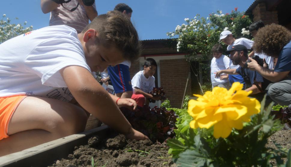 Niños de quinto y sexto de escuela que concurren al programa de apoyo  escolar en la Fundación Los Pinos, cosecharon los alimentos  de la huerta y luego utilizaron esos ingredientes para cocinar. Foto: F. Flores