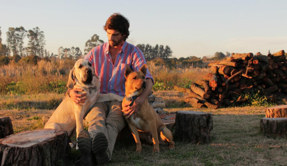 El perro es mucho más que el mejor amigo del hombre. Es considerado un miembro más de la familia. Foto: Marcos Paladino