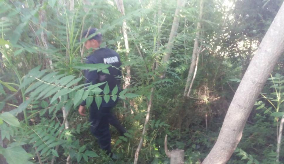 Rastrillaje en la zona de Marindia en busca de indicios sobre el paradero de Brissa. Foto: El País
