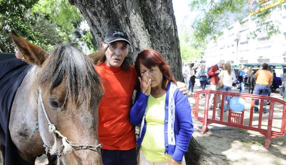 Alfredo Moreno y su esposa Blanca no pudieron contener las lágrimas durante la despedida de su caballo. Foto: D. Borrelli