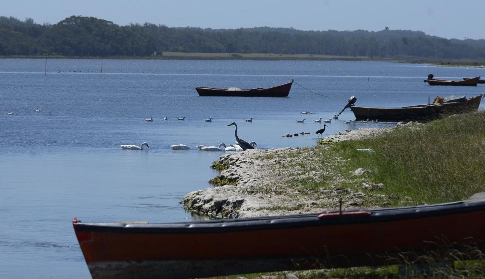 Laguna clave: los pescadores dicen que tener electricidad favorecerá la explotación sustentable y cuidado del ambiente. Foto: Nicolás Pereyra