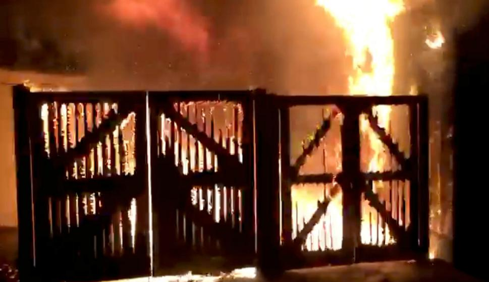 Incendio en el zoológico de Londres. Foto: Captura.