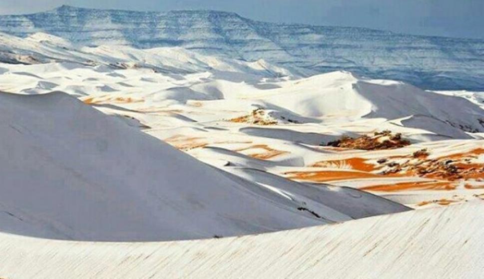 El desierto del Sahara se cubrió de nieve. Foto: Instagram  ecology_department