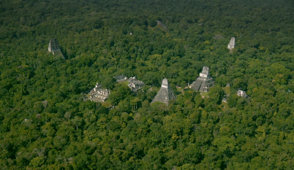 Las pirámides de la Reserva de la biósfera Maya Foto: Cortesía de NatGeo