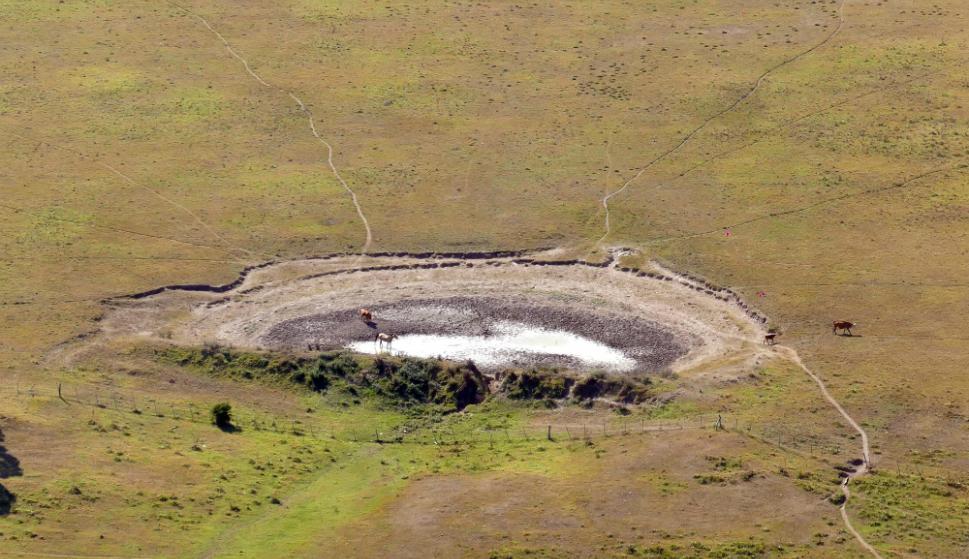Sequía: estiman que rendimiento de soja será 1.000 kilos menor. Foto: R. Figueredo