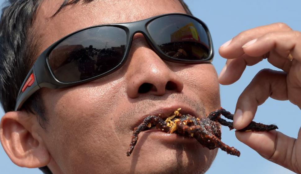 Las tarántulas están amenazadas en Camboya. Foto: AFP