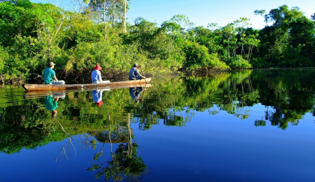 Resultado de imagen para amazonia uruguay