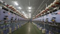 En febrero 38.499 trabajadores cobraron esta prestación. Foto: Reuters