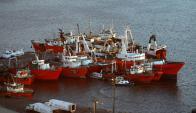 Pesqueras creen que Ancap realizó actividades sísmicas de forma irresponsable. Foto: A. Colmegna