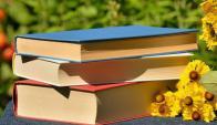 Acercamiento a la lectura. Foto: Pixabay