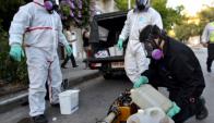La Intendencia de Montevideo fumigará por la alta presencia de mosquitos. Foto: IMM