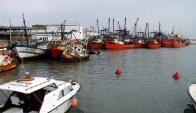 Ya hubo dos intentos fallidos en explotar la anchoíta en el puerto de La Paloma. Foto: R. Figueredo