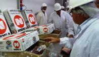 E.E.U.U abrirá mercado para carne producida en compartimientos ovinos. Foto: F. Flores