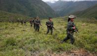 Los miembros de las FARC comenzaron ayer el proceso de pacificación. Foto: Reuters