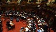 Tras aprobarse en el Senado, pasa ahora a Diputados. Foto: A. Colmegna