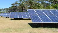 Parque de paneles para tomar energía solar. Foto: Ricardo Figueredo