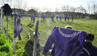 Los violetas moviéndose en suelo trinitario. Foto: Gerardo Pérez