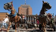 Carros de caballos. Foto: AFP