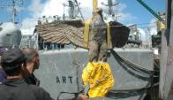 El águila fue sacada de las aguas del Río de la Plata en 2006. Foto: Archivo