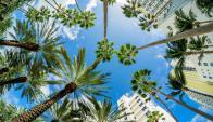 """Interés. En la """"ciudad del sol"""" es lo que buscan generar los empresarios con la actual gira. (Foto: Shutterstock)"""