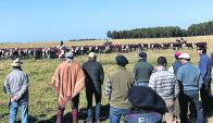Entre 150 y 200 productores de todo el país acompañaron la recorrida. Foto: Javier Terra