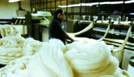 Uruguay busca valorizar más sus lanas ultrafinas. Foto: Archivo.