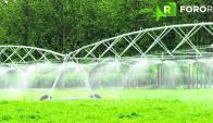 Iniciativa del gobierno dará incentivo a empresas agropecuarias para aumentar productividad. Foto: Fororural.