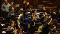 El proyecto será votado antes que termine el año en la Cámara Baja. Foto: F. Ponzetto