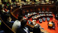 El proyecto para ahora a la Cámara de Diputados. Foto: F. Ponzetto