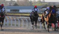 Brillo. El ganador del Jockey Club correrá el Nacional. Foto: Marcelo Bonjour