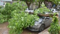 Turbonada causó destrozos en Durazno. Foto: Víctor Rodríguez