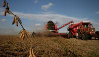 Con buenos precios la agricultura buscó expandirse. Foto: Archivo El País