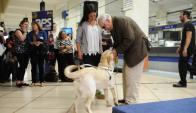 Alberto Calcagno recibe a su nuevo perro guía. Foto: M. Bonjour