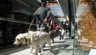 Alberto Calcagno fue el primero en tener un perro guía en Uruguay. Ahora sale acompañado por Bambú. Foto: Fernando Ponzetto.