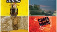 Cuatro discos de la selección