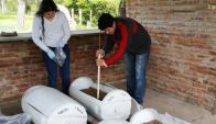 La experiencia se está desarrollando en la escuela agraria de Fray Bentos. Foto: Archivo