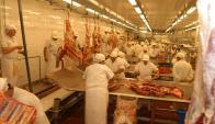 Carne: van 18 cortes de alto valor, con edad animal certificada mediante trazabilidad.