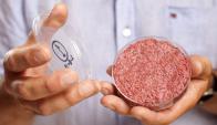 fabricada con células madre de vaca