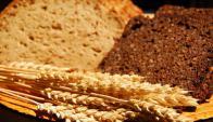 Hay gluten en el trigo, avena, centeno y cebada.