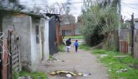 En 2012 dieron sus primeros pasos para comprar las tierras y hoy son los dueños. Foto: F.Ponzetto.