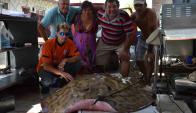 La raya se volvió 80 kilos de carne para milanesas. Foto: Daniel Rojas