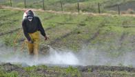 En los últimos dos años, Salud Pública aplicó seis multas por contaminación. Foto: La Nación