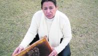 El productor que aplicó el pesticida fue multado por el MGAP por haberlo hecho en un día de viento.
