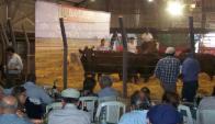 En Agropecuaria de Salto remataron Escritorios Correa & San Román & Zambrano & Cía.