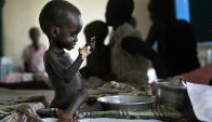 África: el 20% del continente africano padece de hambre. Foto: AFP