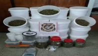 Marihuana incautada durante el operativo. Foto: Ministerio del Interior.