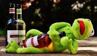 Kermit borrachp