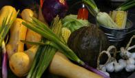 El mundo vegetal ofrece una alta gama de excelentes nutrientes.